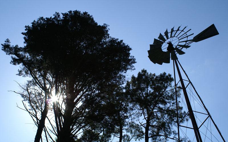 Visitar Vilagarcía, parques y jardines